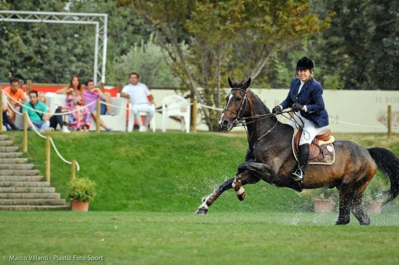 All Arezzo Equestrian Centre Arriva L Eleganza Assoluta