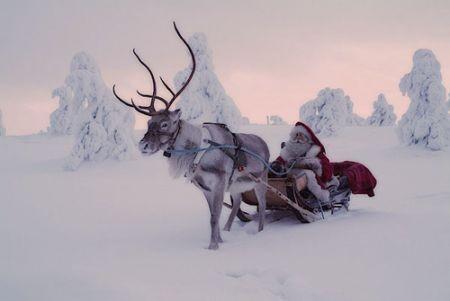 Polo Nord Di Babbo Natale.Il Villaggio Di Babbo Natale A Castiglion Fiorentino Dal